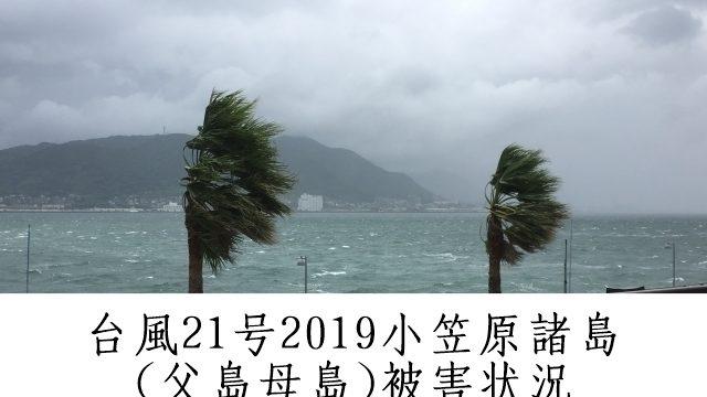 台風21号2019小笠原諸島(父島)の被害状況ツイッターの反応&ライブカメラ