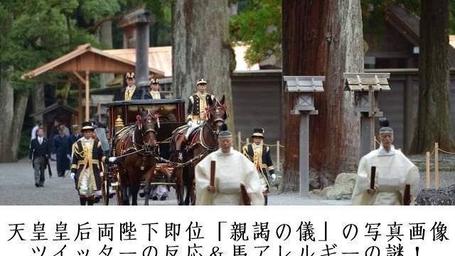 天皇皇后両陛下即位「親謁(しんえつ)の儀」の写真画像ツイッターの反応&馬アレルギーの謎!